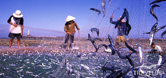 Hải sản, nước mắm Phú Quốc