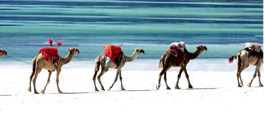 lac da o somalia