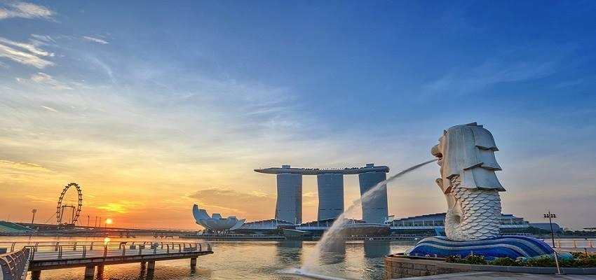 tu singapore về viet nam